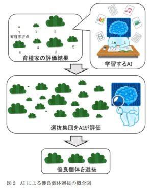 AIによる優良個体選抜の概念図