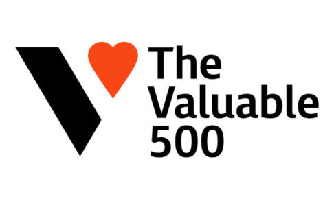 The Valuable 500