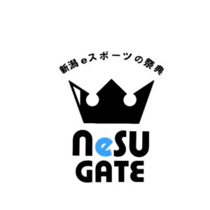 NeSU GATE